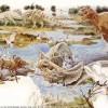 Definen las razones evolutivas de la vida en la Tierra