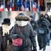 Miles criollos residen en centro-norte USA afectados por nevada