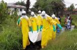 BM Y OMS advierten sobre graves consecuencias de pandemias