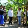 La reina Letizia visitó una cooperativa en Azua
