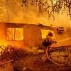 Incendios en California dejan pérdidas multimillonarias