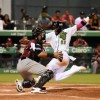 Estrellas y Toros mantienen la punta del béisbol dominicano