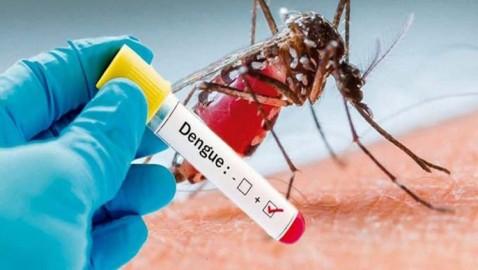 OPS mantiene alerta por epidemia de dengue en América Latina